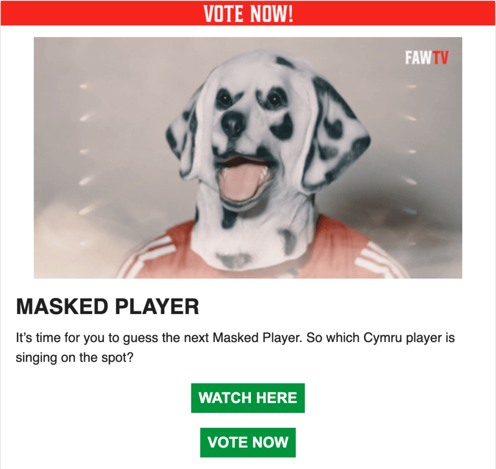 The Wales FA with their 'vote the masked player'